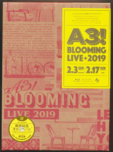 A3! BLOOMING LIVE 2019 SPECIAL BOX [酒井広大|白井悠介|西山宏太朗|他]【ブルーレイ】